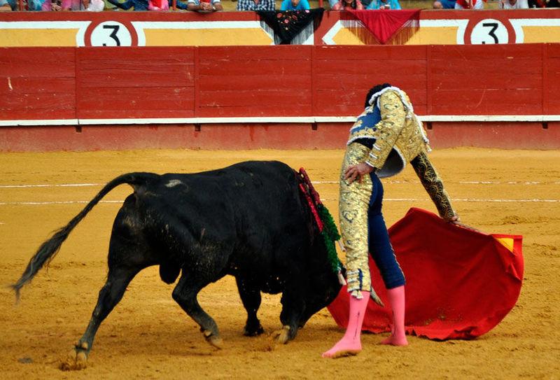 ¿Te alegra la muerte de Víctor Barrio o de cualquier otro torero?