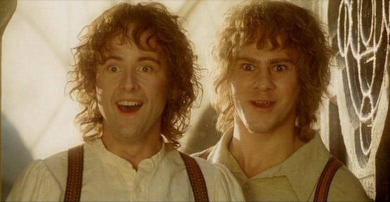 En El Señor De Los Anillos tenemos un par de hermanos hobbits, escoge.