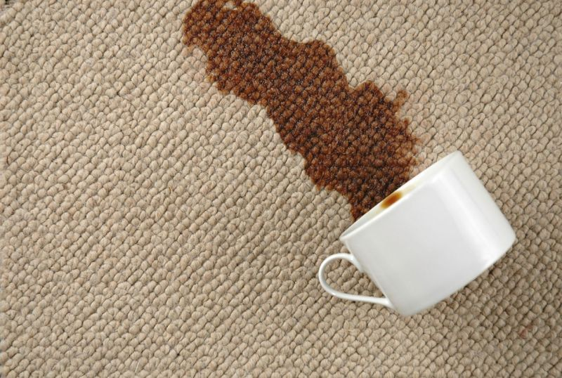 Has manchado sin querer algo de una casa ajena (una alfombra, la moqueta, etc...). ¿Cómo reaccionarias?