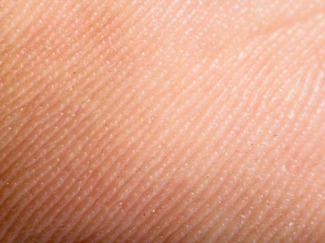 ¿Cuál es el peso de la piel de un ser humano adulto promedio?
