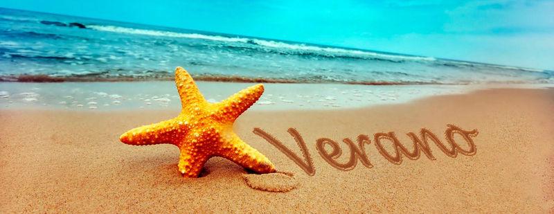 21425 - ¿Sabes disfrutar del verano?