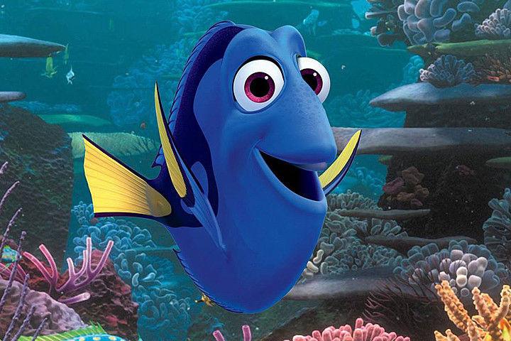 Y está simpática pez, que se gano nuestros corazones, ¿Quien es?