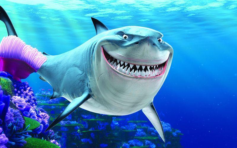 Si el pez anterior se gano nuestros corazones, este tiburon se gano nuestro miedo, ¿Quien puede ser?