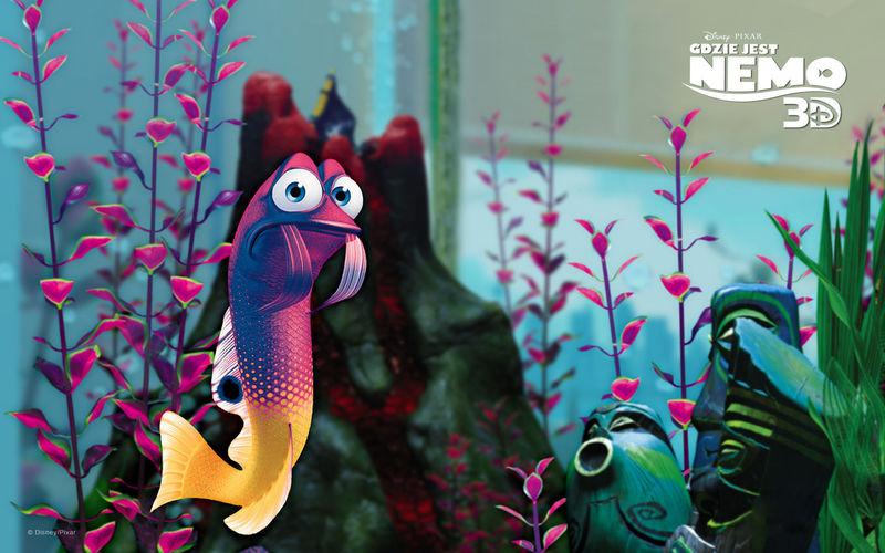 Y este pez era un pelín nervioso, pero lo que nos reímos con el... ¿Quien era?