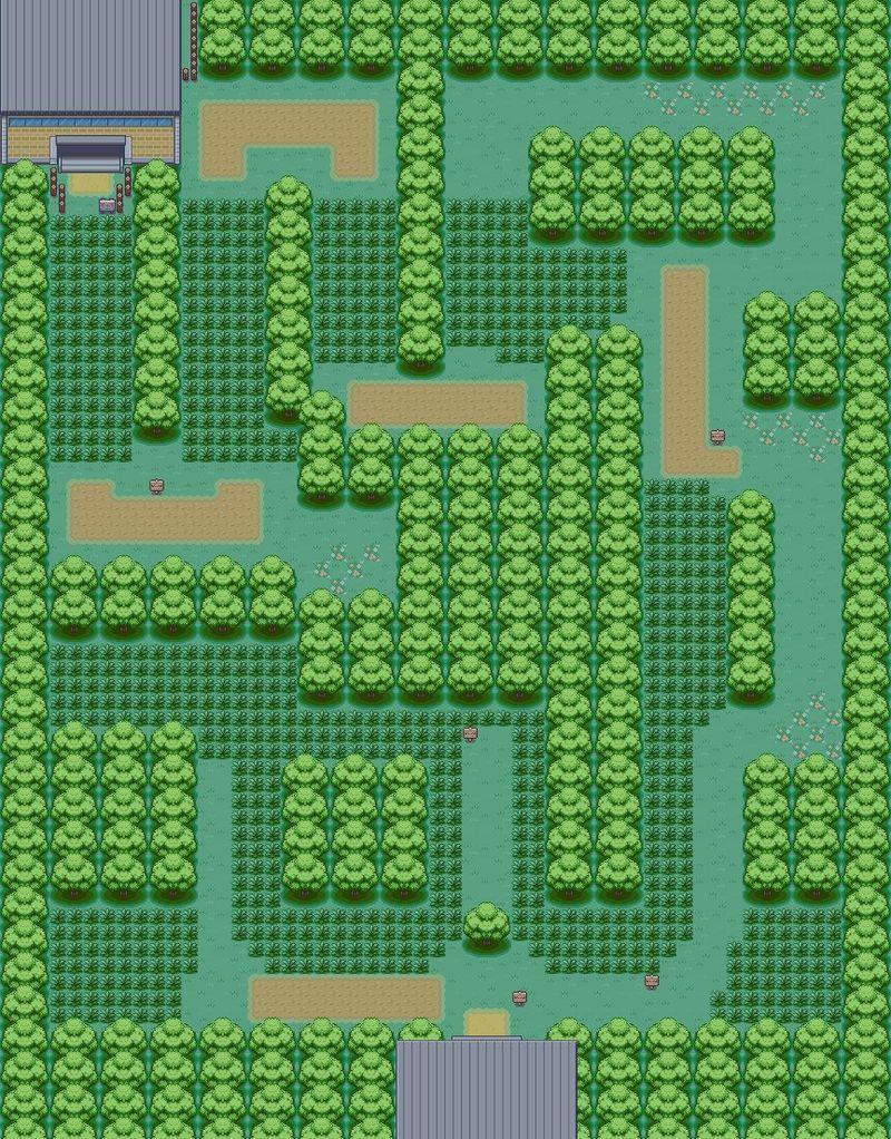 ¿Cuántas personas hay en el Bosque Verde/Viridian Forest? ah y dime cuántos de ellos son entrenadores