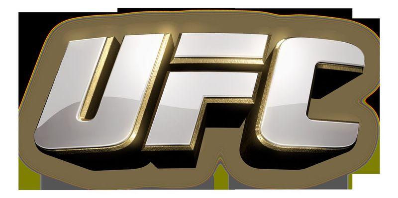 22253 - ¿Reconoces estos luchadores de UFC?