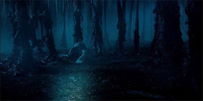 ¿Quienes llegaron a entrar por su voluntad en el bosque oscuro?