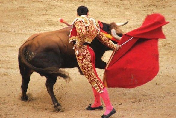 Corridas de toros(tauromaquia)