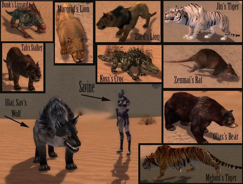 Los guardabosques pueden tener una mascota. ¿Son todas iguales en el combate?