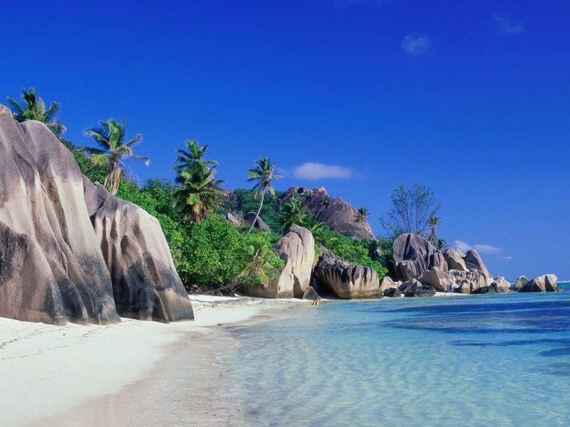 Si te pierdes en una isla  junto, y nadie es capaz de encontrar provisiones, ¿qué crees que terminaría pasándote?