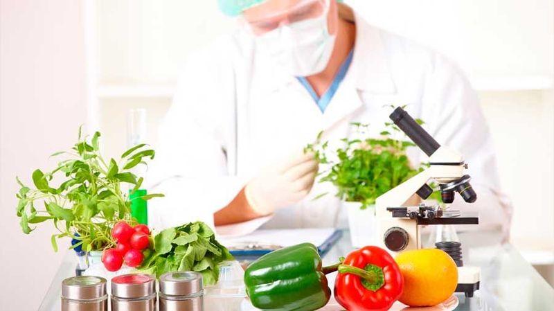 23025 - Real o ficción: ¿Podemos adivinar que comida se extinguirá?