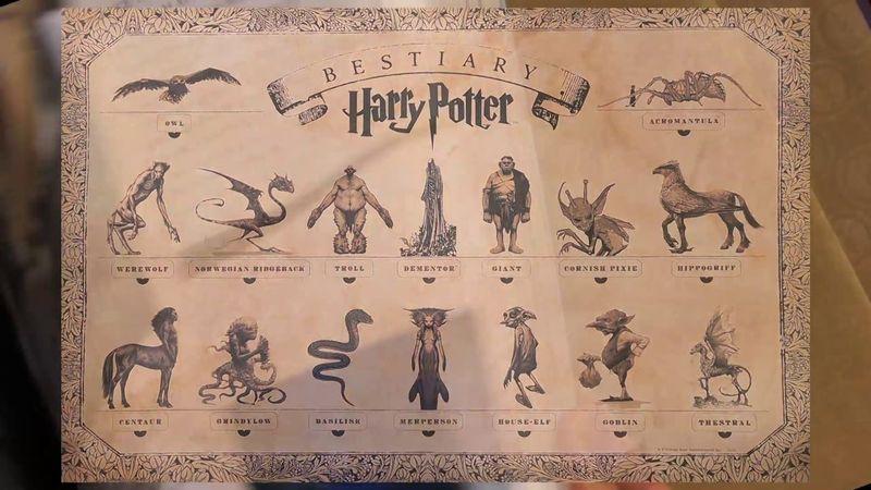 ¿Con qué criatura mágica querrías encontrarte durante tu estancia en Hogwarts?