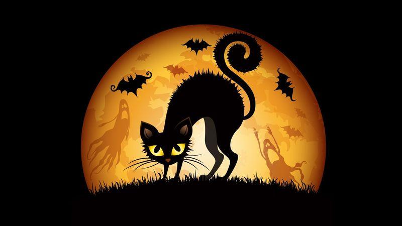 Una de las teorías que explica por qué los gatos negros dan miedo fundamenta su 'base' en la creencia de que...