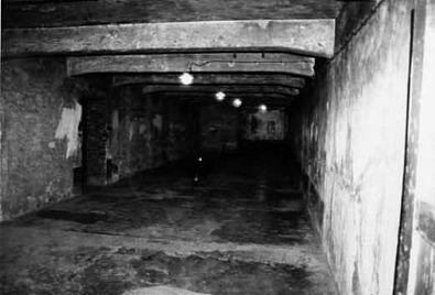 Auschwitz, 1942. Te han dado la difícil misión de ser el que baje la palanca para abrir las cámaras de gas.