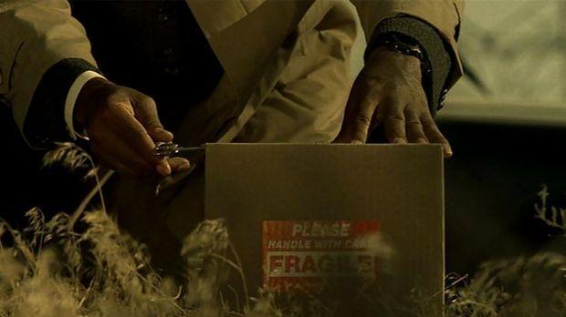 Una vez Mills y Somerset se reúnen con el asesino, éste les trae una caja. ¿Qué hay en ella?
