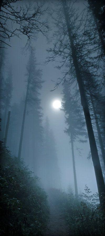 El camino parece que empieza a empinarse cada vez más y comienzas a oir aullidos de lobos que parecen cada vez más cercanos.