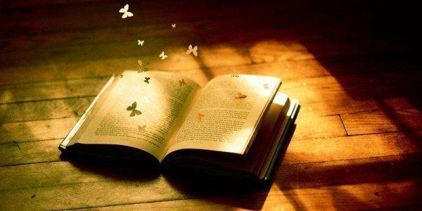 23881 - ¿Qué es lo que más te gusta de una novela?