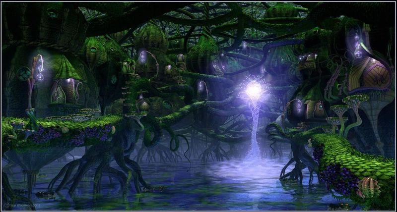 Si vas al Bosque del Sueño, ¿qué objeto llevarías contigo?