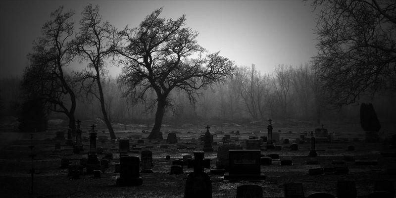 Te decides por el cementerio, alli ves a un grupo que llama tu atención.
