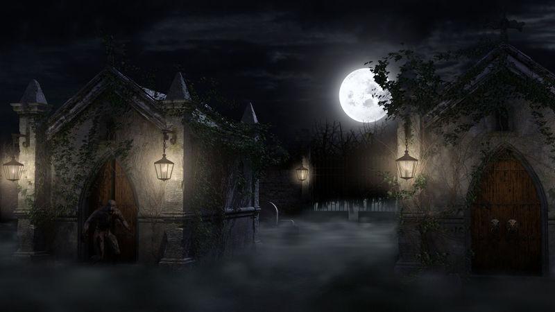 Dejas al grupo y sigues buscando por el cementerio cuando ves una cripta abierta.