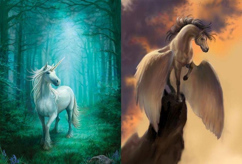 Unicornio vs Pegaso