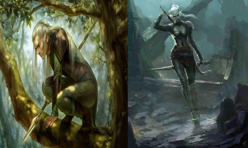 Elfo vs Drow