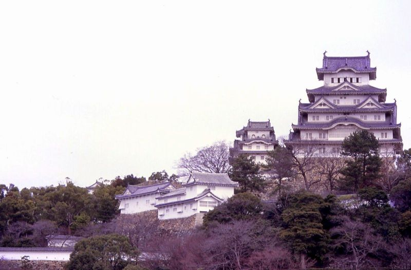Ella en su otra vida era una princesa de un reino feudal en Japón, pero iba a casarse por obligación