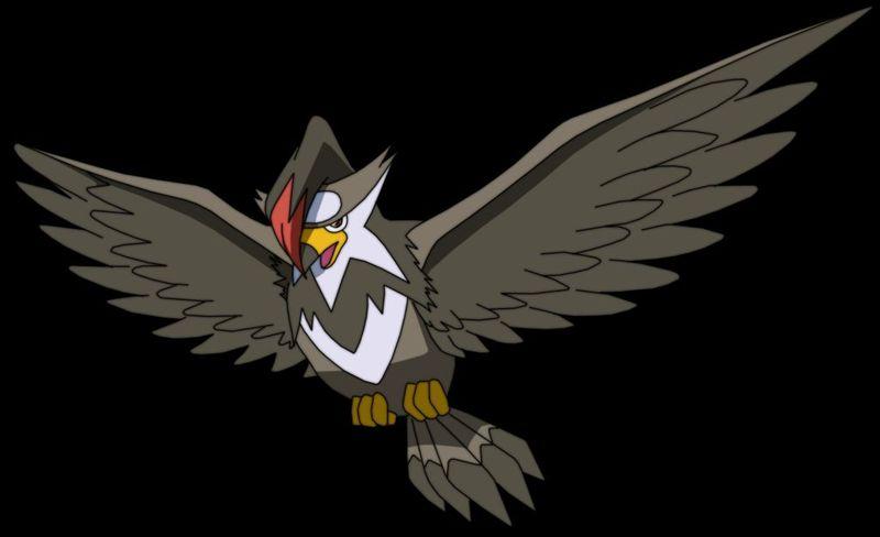 Si tu rival saca a Staraptor qué pokemon de estos escogerías para tener ventaja ...