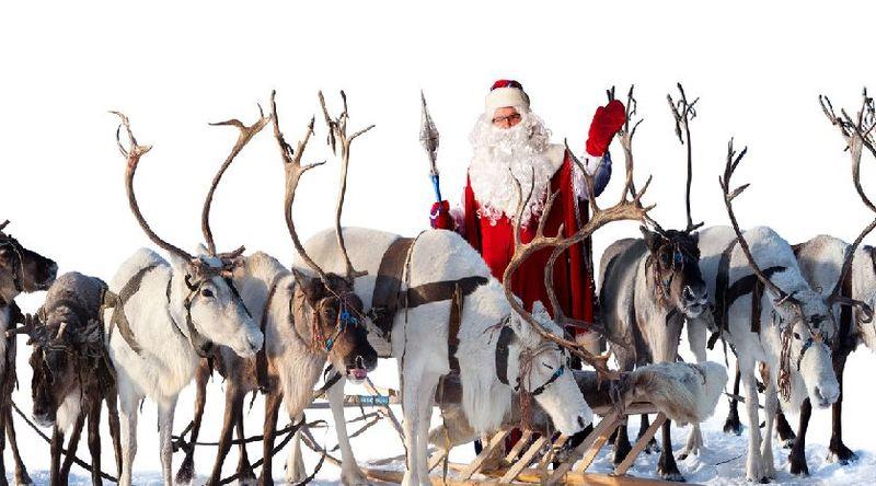 ¿Cuál de estas afirmaciones sobre los renos de Papá Noel es verdadera?
