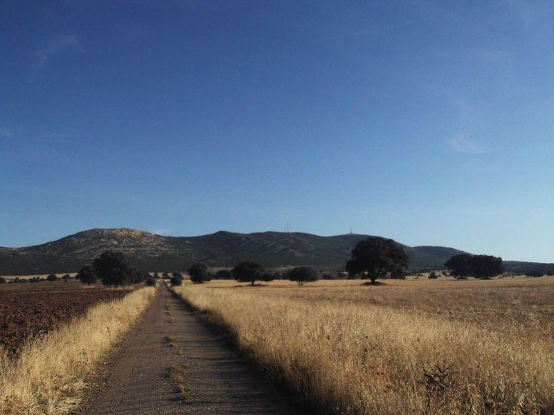 Cual es el monte más alto del Campo de Montiel