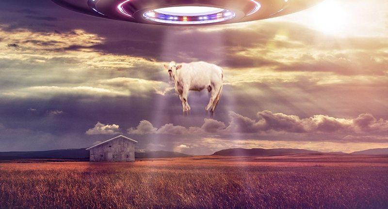 Continuando con la anterior pregunta: ¿Crees todas las historias de avistamientos y comunicación con extraterrestres?