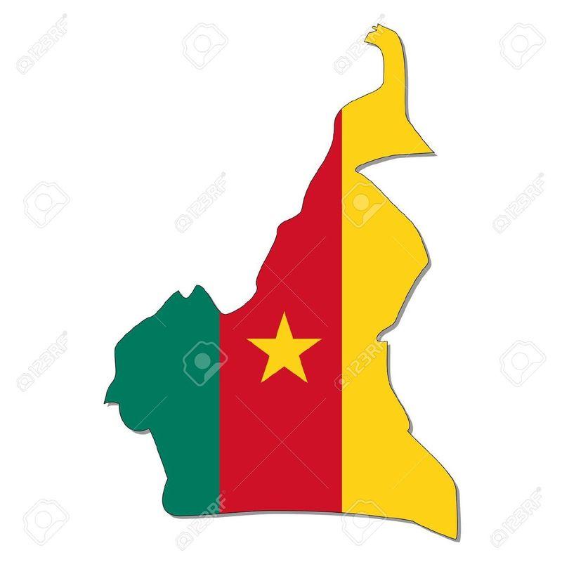 ¿Con qué país NO limita Camerún?