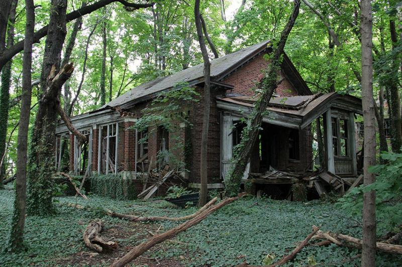 Ves una casita aparentemente abandonada. ¿Entras o sigues tu camino a través del bosque?