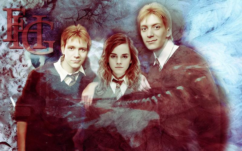 Conseguimos salvar a Fred, pero Hermione cae en batalla