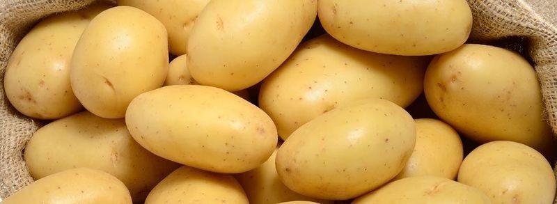 ¿Cómo prefieres la Patata?