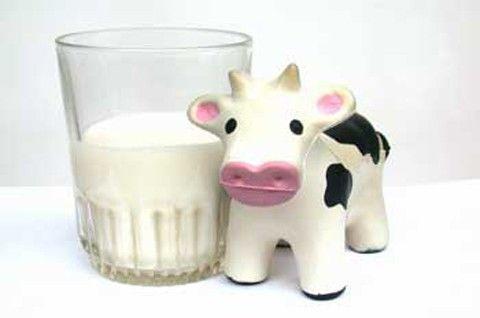 ¿Cómo prefieres comerte un lácteo o derivado lácteo?