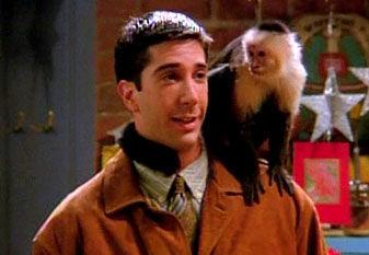 ¿Cómo se llamaba el mono de Ross?