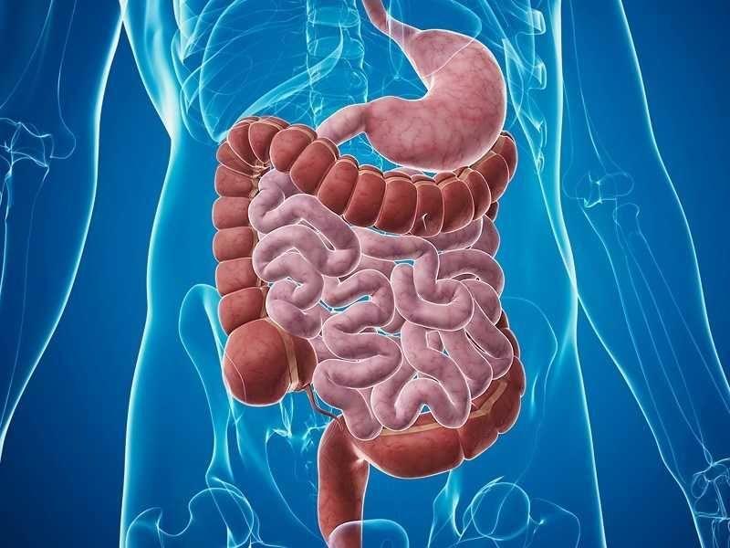 ¿Qué sintomas produce la enfermedad?