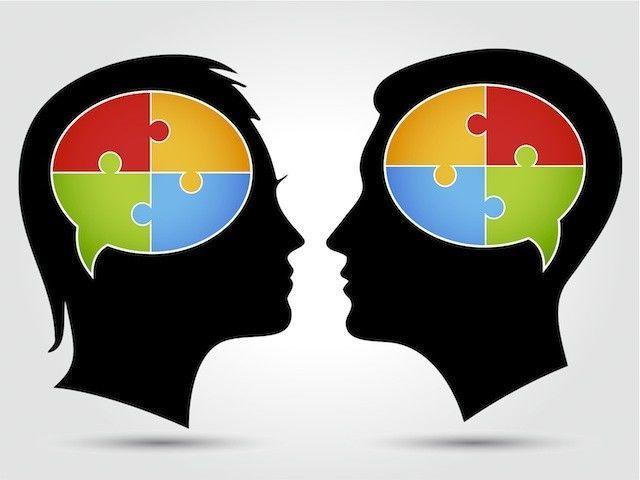 25948 - Diferencias entre el cerebro del hombre y la mujer