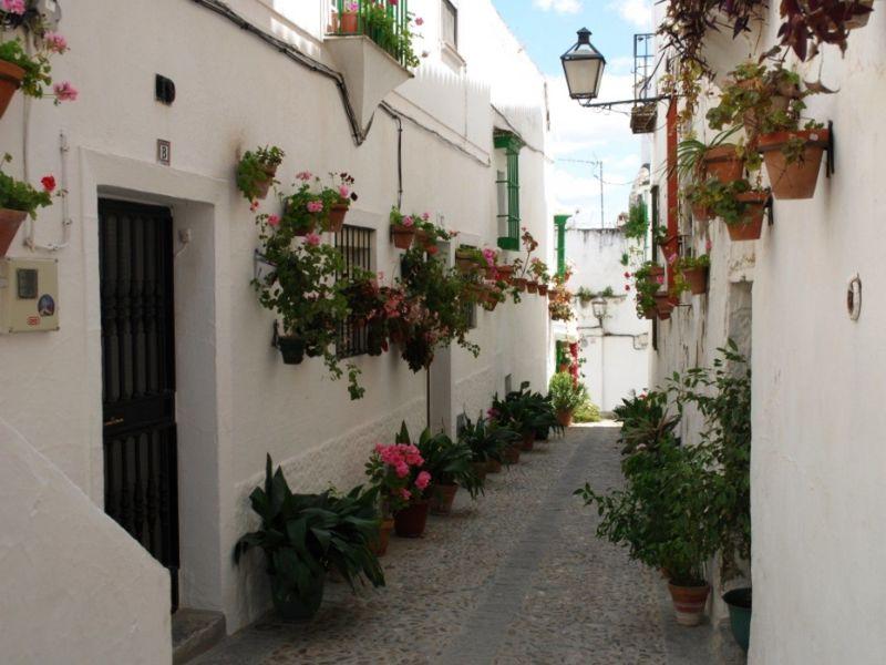 ¿Cuántos municipios tiene la provincia de Cádiz?