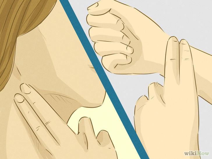 Tómate tu pulso tranquilamente durante un minuto y anota tu resultado. ¿Cuantas pulsaciones tienes por minuto?