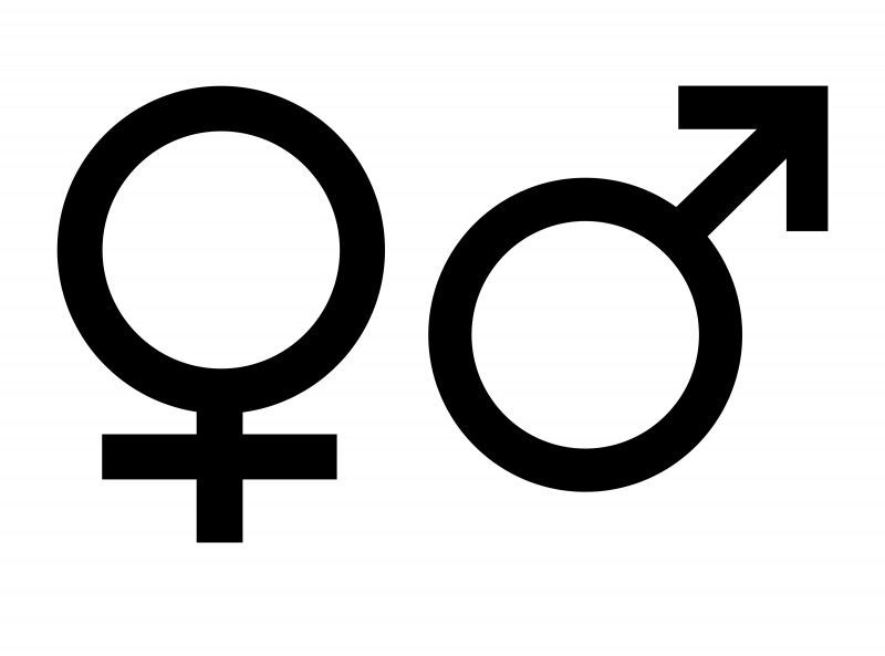 ¿Cuál es tu género?