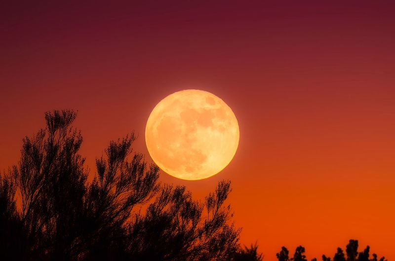 Fecha en la que el hombre pisó por primera vez la Luna