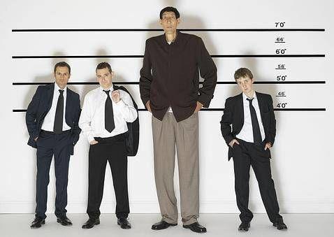 27575 - ¿Qué famoso es más alto?