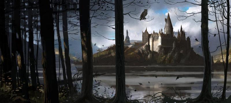 27621 - ¿A qué casa de Hogwarts irían estos personajes de Star Wars?