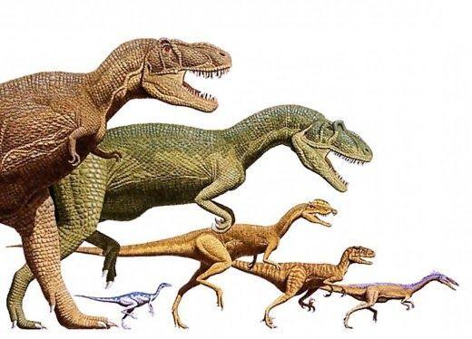 ¿Cuál de estos dinosaurios era más grande que el T-Rex?