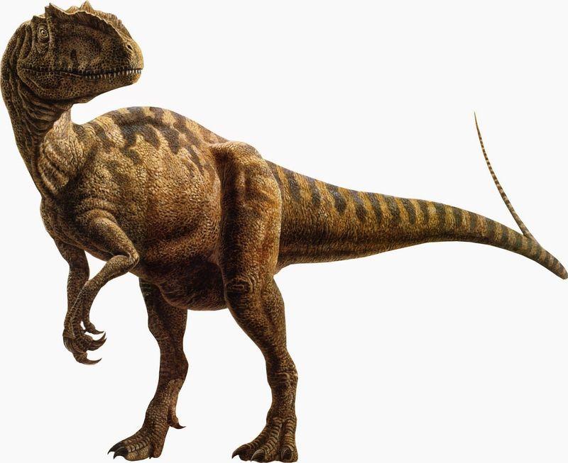 ¿Para qué necesitaban los terópodos colas tan increíblemente largas?