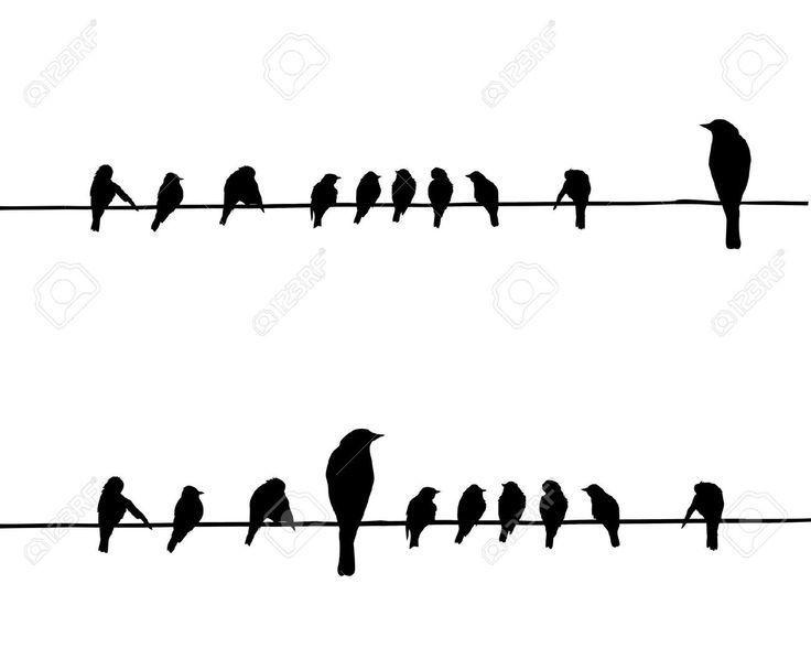 ¿Si fueras un ave cual serías?