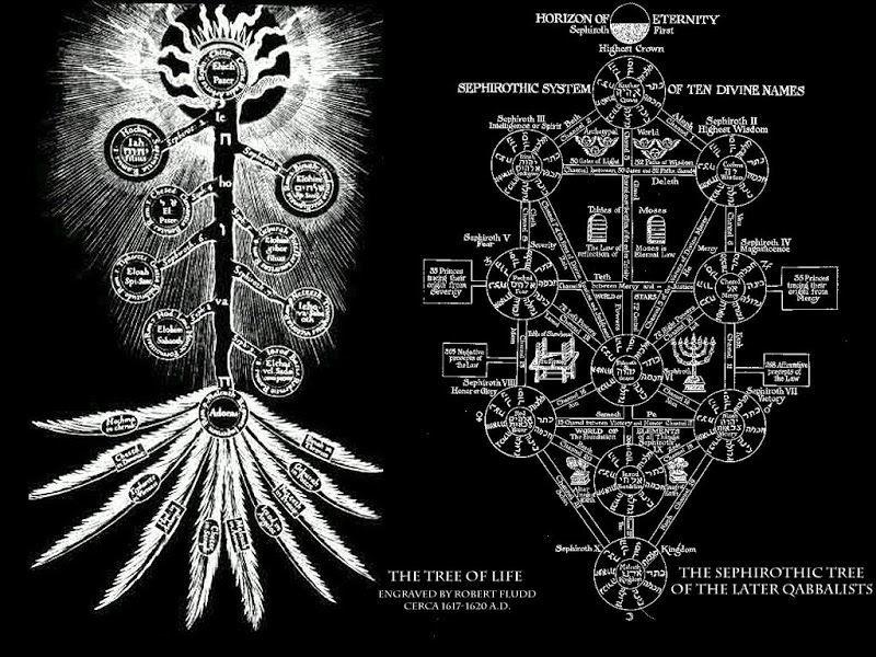 ¿Cuál de estas ramas de conocimiento te interesa más?