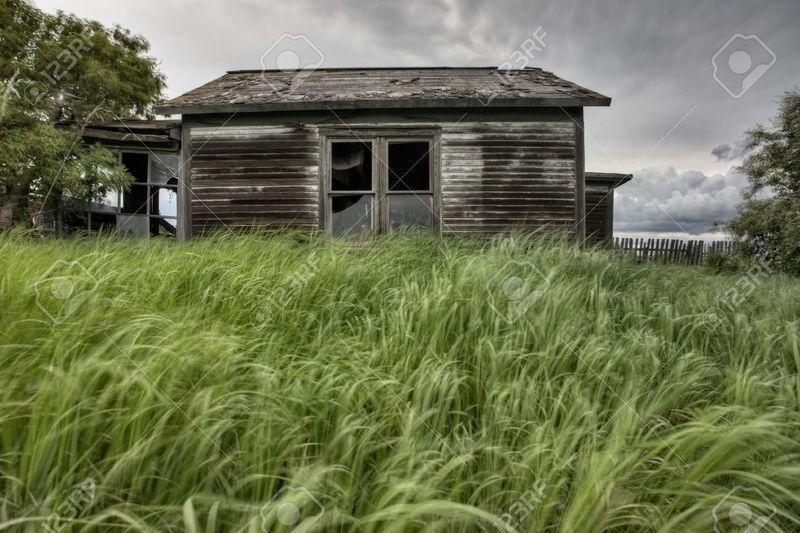 Te mueres de hambre y buscando comida te encuentras con una granja abandonada, ¿qué animal sacrificarás?